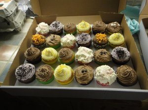 Selection of cupcakes in a box