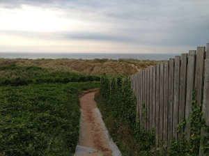 Path down to the beach at Bamburgh